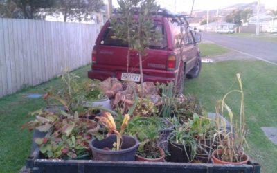 Edible Gardens On The Move